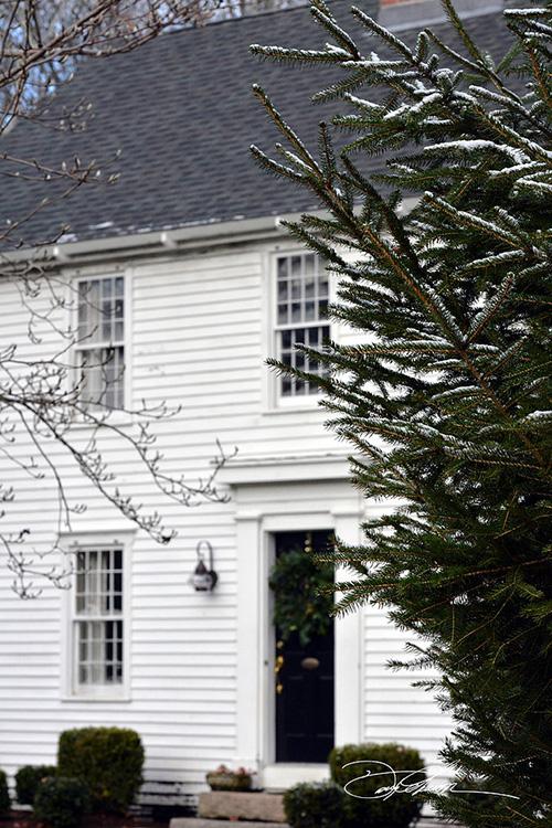 Jul hos DANIEL i Hørsholm